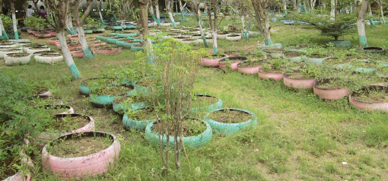 Los jardines en llantas de Haití