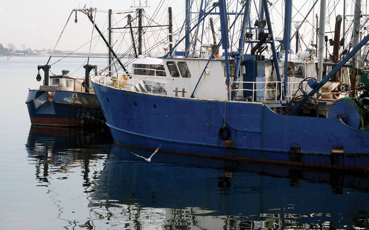 Asia: Esclavitud Moderna en la Industria Pesquera