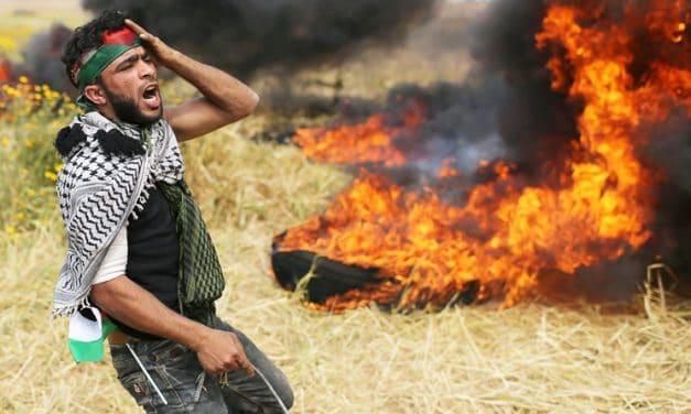 Mundo: Prevención de la Violencia Global