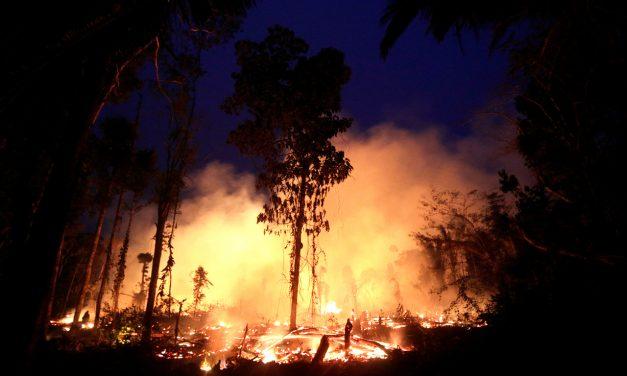 Sínodo Amazónico le da una voz a la Amazonía y a su gente