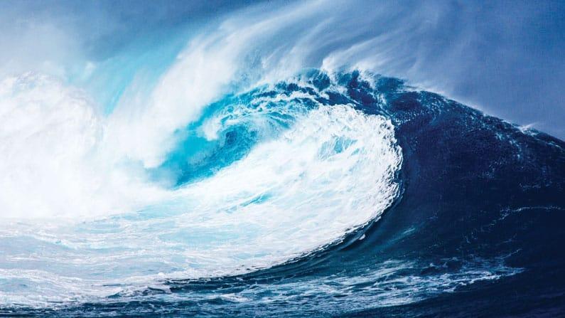 Mundo: Proteger los Océanos