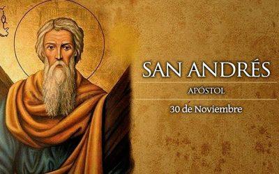 Hoy es Fiesta de San Andrés Apóstol, Ayuda a Unidad entre Católicos y Ortodoxos