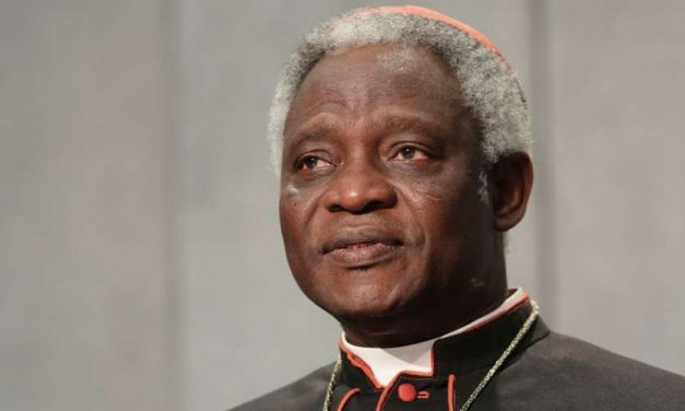 Cardenal Turkson pide acabar con el estigma social de los enfermos de lepra