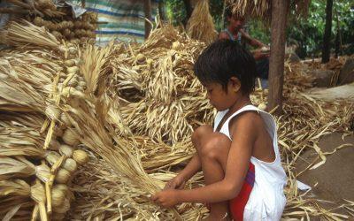 Mundo: Detener el trabajo infantil